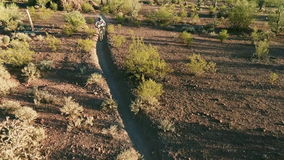 Aerial Shot of Biker on Southwestern Desert Trail stock video footage