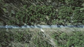 Aerial shot of car road in the forest on a sunny spring day, top view Royalty Free Stock Photography