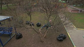 Aerial shot of a child climbing tree in the yard stock video