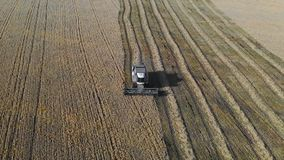 Aerial shot. Combine harvester working on the field. During the day stock video