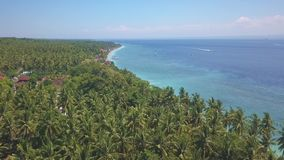 Aerial shot with drone above Bali Nusa Penida tropical Island of Indonesia with beautiful palm trees rainforest and turquoise sea. Water color in paradise stock footage