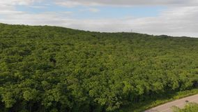 Aerial shot - drone moves above road and forest stock footage