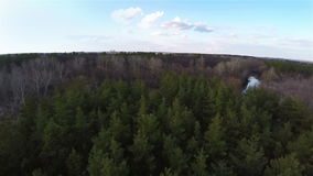 Aerial shot flight above the green forest stock footage