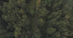 Free Aerial Shot Fly Over Wild Park Or Forest In Cloudy Day Royalty Free Stock Image - 109686276