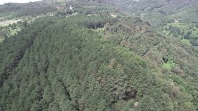 Aerial shot flying above a wood on a hilltop stock video footage