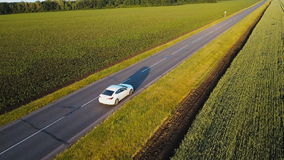 Aerial shot of green countryside and white car driving through. Drone follows vehicle driving though green nature