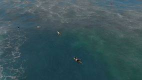 Aerial shot of group of surfers training in a sea stock video footage