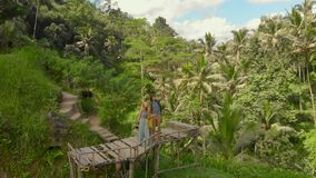 Aerial shot of a happy family tourists visiting famous Tegalalang Rice Terraces in Ubud village on the Bali island.  stock video footage