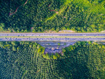Aerial shot highway, road with forest, farm. Vehicles Stock Photo