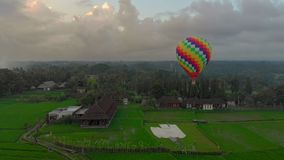 Aerial shot of a hot air balloon that is flying over the big green rice field. Travell to Bali concept. stock footage
