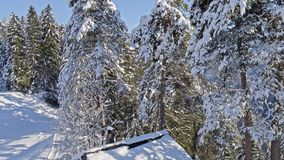 Winter Wonderland Hut Conn Aerial 4k