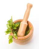 Aerial shot of kitchen mortar with parsley Royalty Free Stock Images