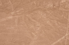 Aerial Shot of Nazca Bird. Ancient geoglyph of a bird, part of the famous Nazca lines in the desert in Peru stock photos