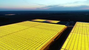 Beautiful view on two massive greenhouses at night, aerial shot. Aerial shot at night, amazing yellow light from the glasshouses and beautiful horizon stock video footage
