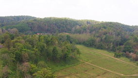 Aerial shot over forest and field in mountains. Video Aerial shot over forest and field in mountains stock video