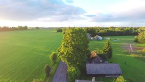 Aerial shot over lush green fields and meadows. Sunset. stock video