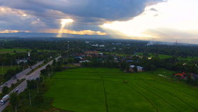 Aerial shot rice field and mountain view stock video footage