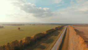 Aerial shot of a rural road. Country road and field. The Forest along the highway. Yellow trees and green grass. Change of seasons. Lonely tree in the field stock footage