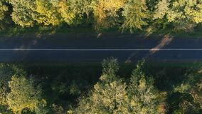 Aerial shot of the straight highway in the Carpathian Mountains in summer. Impressive bird`s eye view of a country highway going through a dense forest in the stock footage