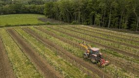 Aerial shot of a tractor working on vineyard stock image