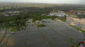 Aerial shot of a traditional Balinese kite during sunset flying over a beautiful rice field filled with water stock video footage