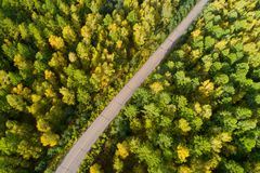 Trail in colorful autumn forest. Aerial shot of trail in colorful autumn forest Stock Images
