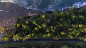 Aerial Shot Of Trees Stock Image