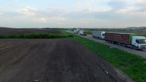 Aerial shot of truck driving a road benween fields. Sunset time. Spring season stock footage