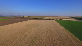 Aerial shot of a wheat field stock footage