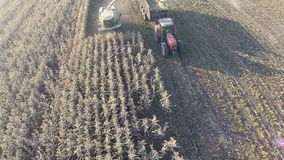 Aerial shot of wheat harvesting in the field. RYAZAN, RUSSIA - SEPTEMBER 13, 2015: Flying over harvester and tractor with trail working on farmland to gather stock video footage