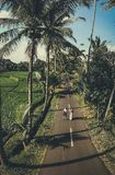 Aerial shot of young couple walking among coconut palm trees. Bali island.
