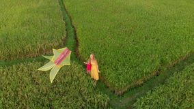 Aerial shot of a young woman and her little son playing with a yellow kite on a beautiful field.  stock video