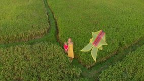 Aerial shot of a young woman and her little son playing with a yellow kite on a beautiful field.  stock video footage