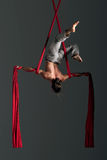 Aerial silk male performer Stock Image