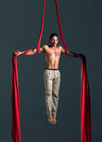 Aerial silk male performer Royalty Free Stock Photos