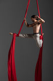 Aerial silk male performer Royalty Free Stock Images