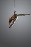 Aerial silk male performer Royalty Free Stock Photo