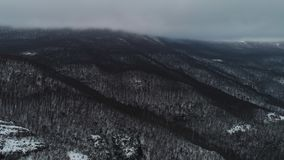 Aerial Snow Covered Trees Drone Footage Landscape Winter Nature. Shot. Snowy tree branch in a view of the winter forest stock footage