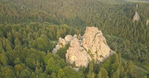 Tustan fortress - archaeological and natural monument of national significance, popular tourist landmark. Urych, Carpathian Mounta. Aerial spectacular view to stock footage