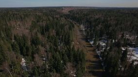 Aerial spring season in a forest. Aerial shot taken in early spring season or late winter in a forest with a stream running through the landscape, Russia stock footage
