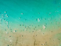 Aerial Summer View Of Clear Ocean Water With Tourists royalty free stock photo