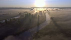 Aerial sunrise with fog at the tree tops in the rural countryside stock video footage