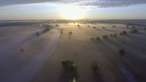 Aerial sunrise with fog at the tree tops in the rural countryside.  stock video footage