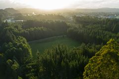 Aerial sunset at Rotorua, New Zealand. Aerial landscape over redwood forest in rural Rotorua, New Zealand royalty free stock photography