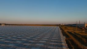 Aerial sunset view agricultural greenhouses stock footage