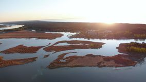 Aerial swamp on the river Lielupe in Varnukrogs - Golden Hour sunset top view from above - Drone shot with evergreen stock video footage