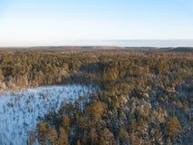 Aerial taiga Royalty Free Stock Image