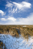 Aerial taiga Royalty Free Stock Photo