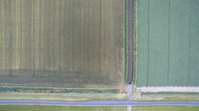Polder landscape in the Netherlands royalty free stock photography