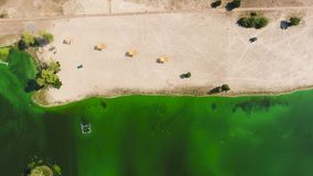 Aerial top down of empty sandy beach by water heavily polluted with green algae. Environmental problems, ecology and nature stock video
